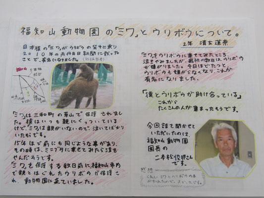 福知山動物園の「ミワ」とウリボウについて