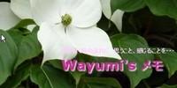 Wayumi'sメモ
