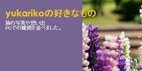 yukarikoの好きなもの