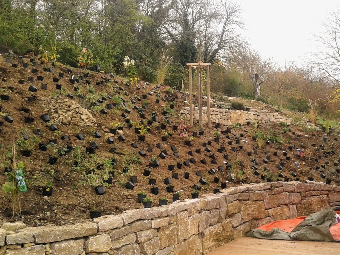 Trockenmauer/Bepflanzung