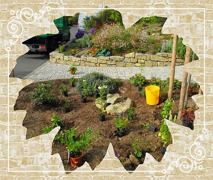 Natursteinmauer /Bepflanzung