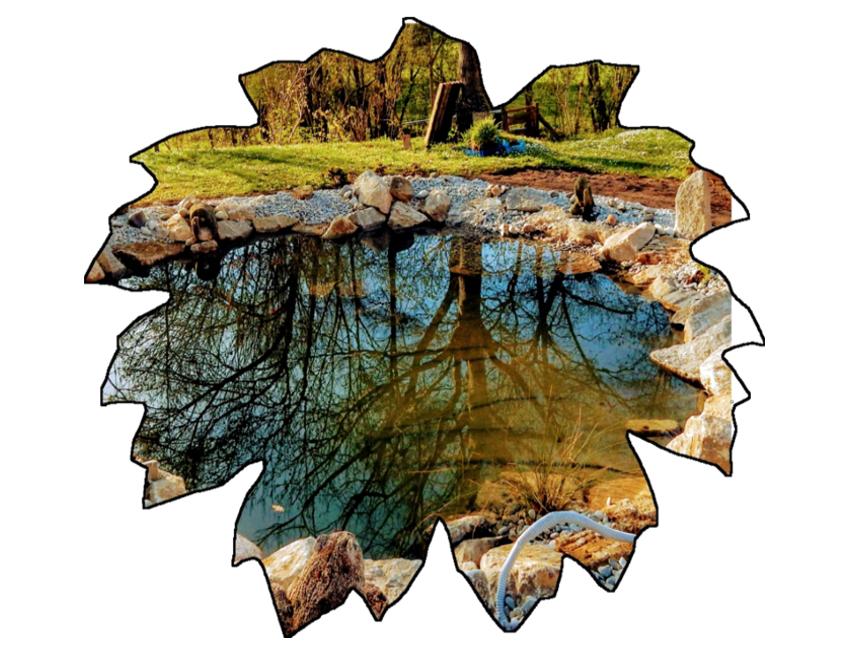 Teichanlage/Ufer Muschelkalk
