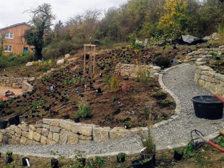 Trockenmauern/Bepflanzung