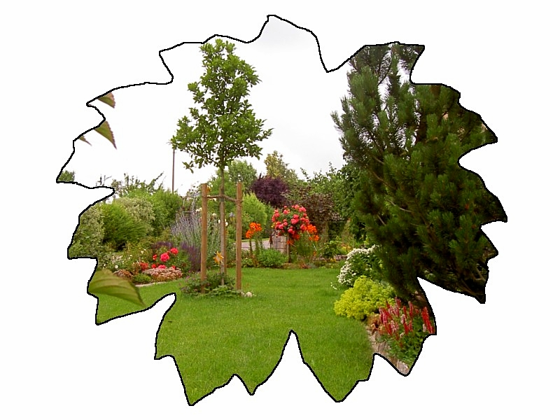 Gartenneuanlage