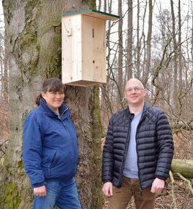 Hornissenschutzprojekt auf dem Rieperturm