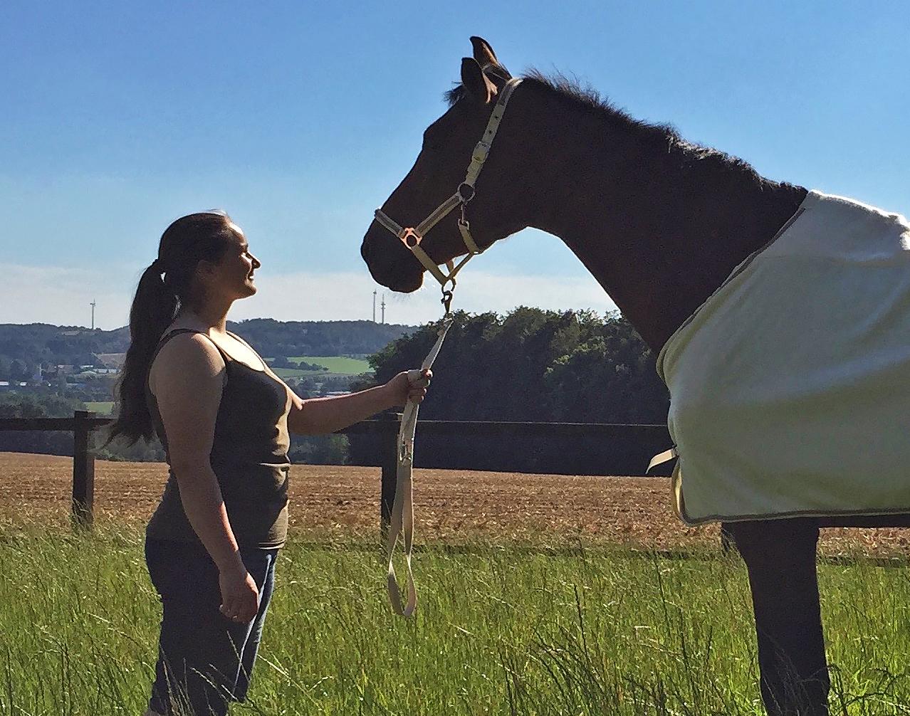 Hilfen für Pferd und Reiter von Elena Lindner