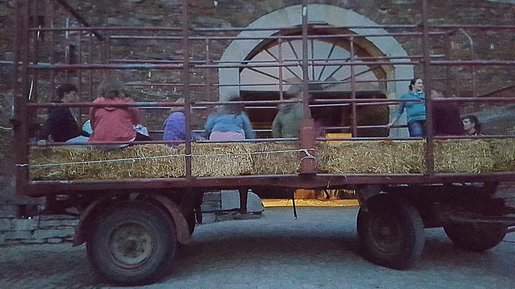 Ferienkinder auf dem Rieperturm