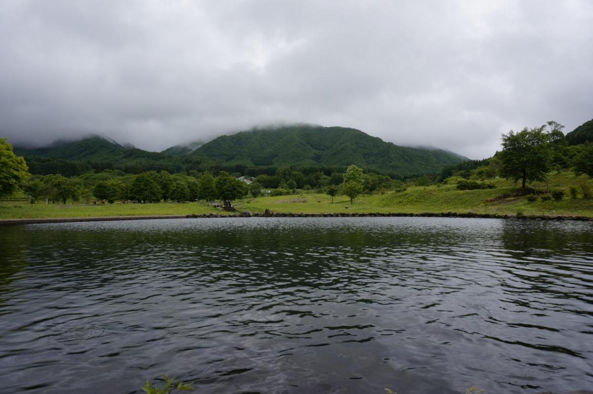 登った先にはちょっとした池が。風が心地いい。