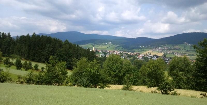 Sonniger Steig - Rund um Ulrichsberg
