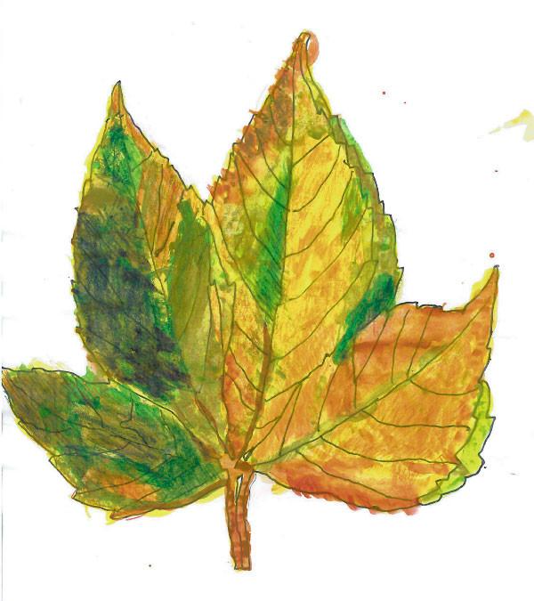 Herbstblatt - Nikki 2012