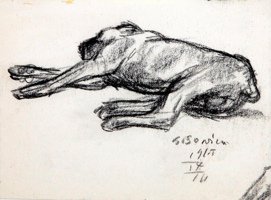 Dogge, Studie, 1965