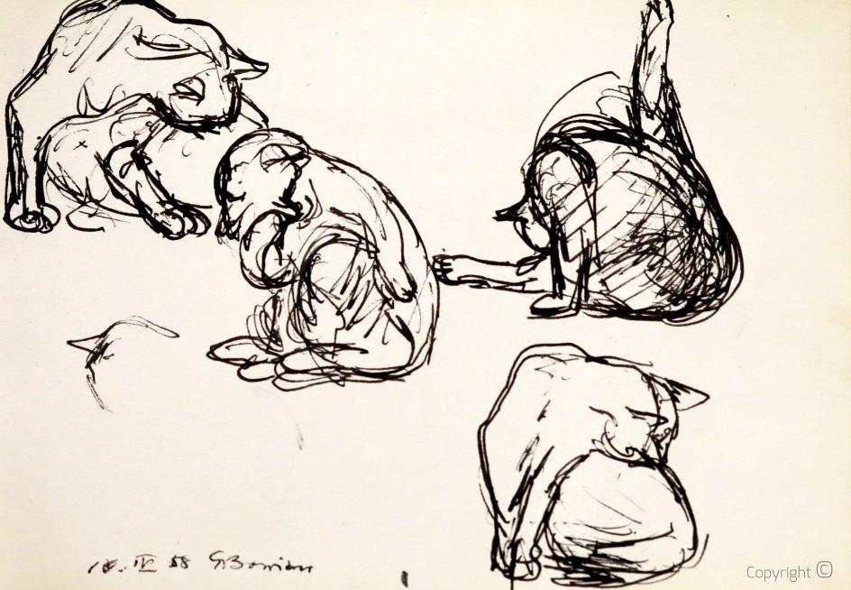 Cats, study, 1958