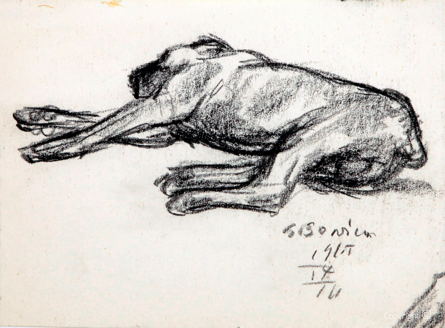 Great Dane, study, 1965
