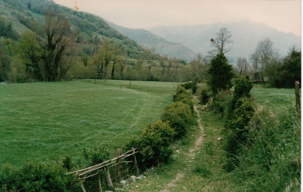 chemin de l'Engous