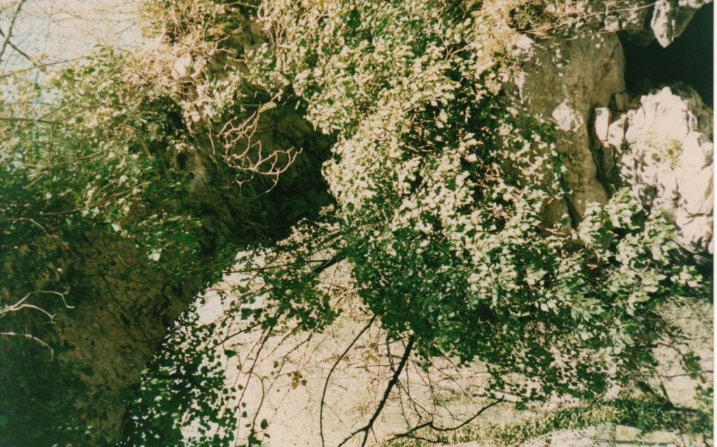pont antique sur le ruisseau de Bélonce