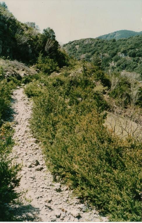 Camino de Santiago, Ultreia !