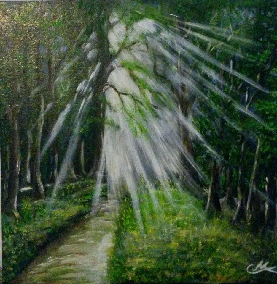 Sonnenschein in Waldlichtung