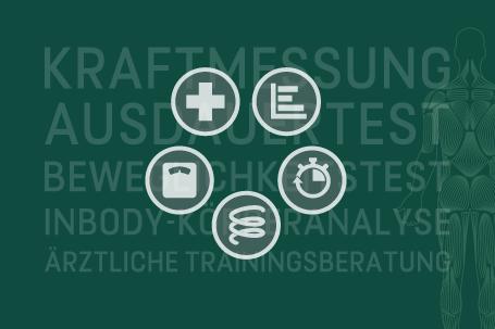 Icons für die Unterseiten Kraftmessung, Ausdauertest, Beweglichkeitstest, InBody-Körperanalyse und ärztliche Trainingsberatung