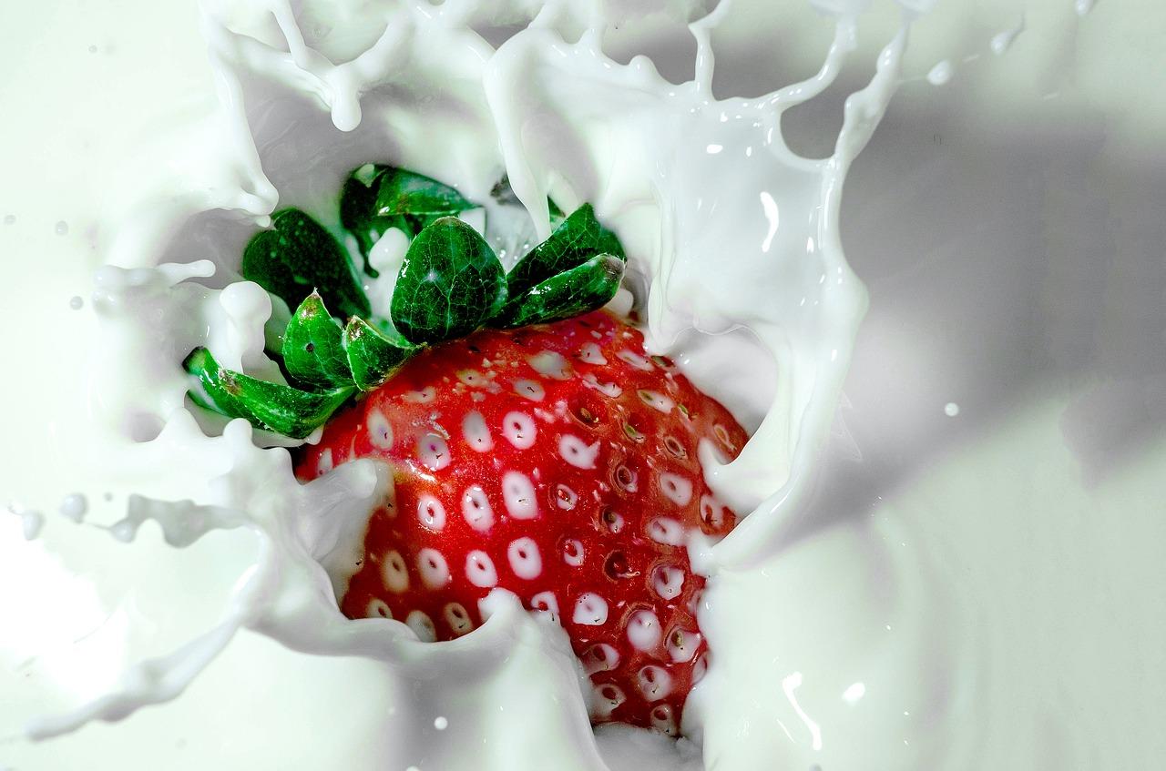 NYで「高級イチゴ量産工場」営む日本人の野望