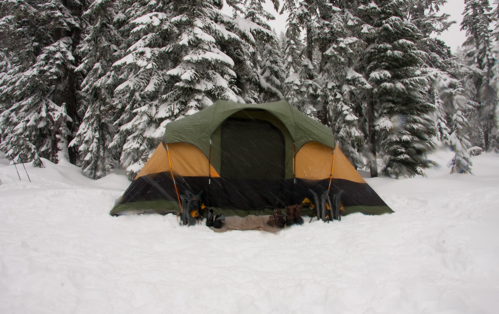 キャンプ初心者「忘れがちな必需品」10のリスト