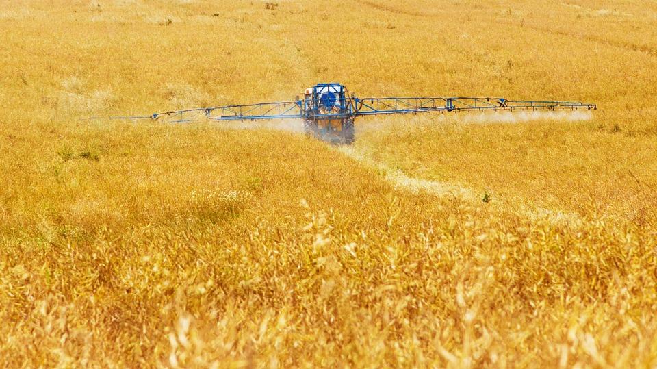 「自国民は食べない」小麦を輸入する日本の末路