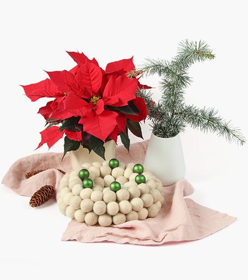 stern zvezda weihnachtsstern advent adventskranz gift wrapping felt balls kroglice iz filca filzkugeln garndundmehr kvačkanje crochet geschenkeverpacken weihnachten zavijanje daril xmas x-mas christmas inspiration inspiracije