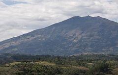 標高の高い産地は実の締まったコーヒー豆ができ、酸味と甘みのあるコーヒー豆ができる。