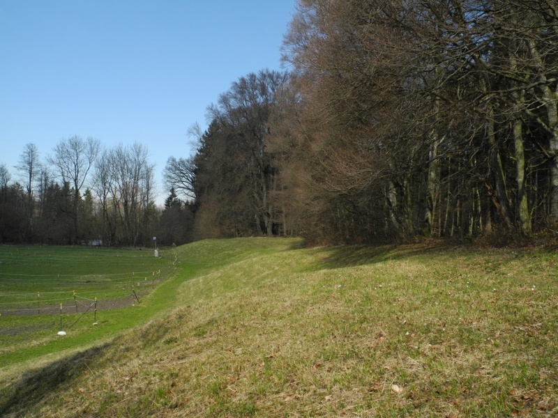 Charakteristische Niederterrasse – Flutmulde des ehemaligen Würm-Bettes mit Halbtrockenrasen