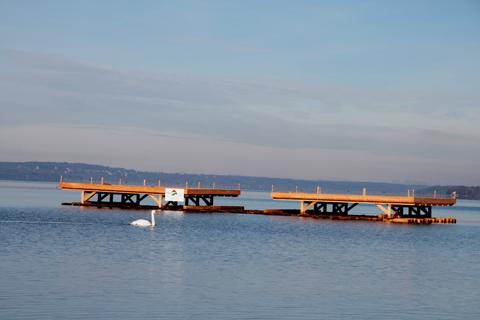 Flussseeschwalbenfloß am Starnberger See (Foto: Horst Guckelsberger)