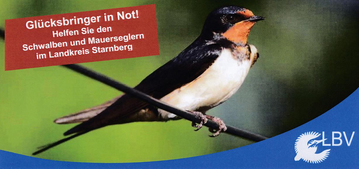 Vogelschutz: Arbeitskreis Schwalben und Mauersegler, gegründet 2016