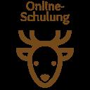 Online-Schulung