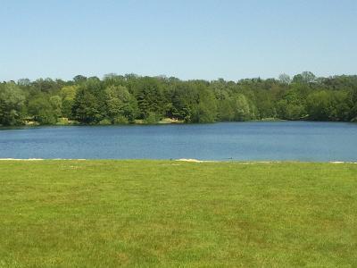 Liegewiese mit Blick auf den See