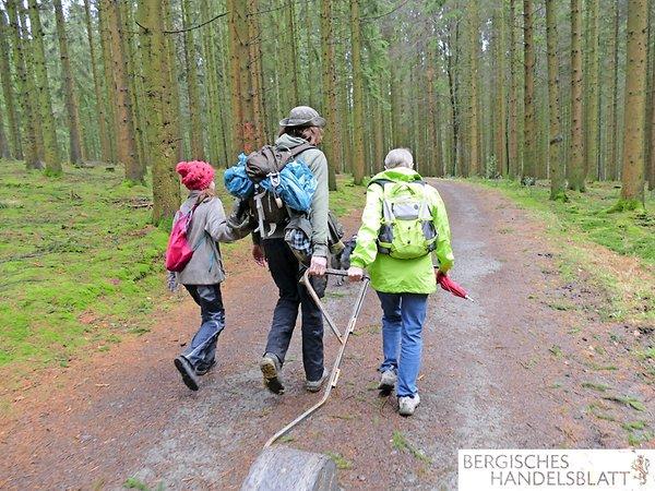Auf schönen Waldwegen unterwegs