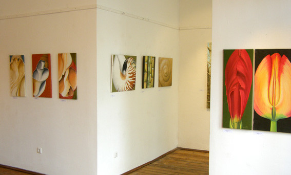 Peter Newrkla: Naturbetrachtungen