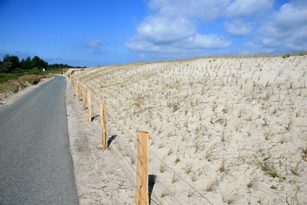 Neuanpflanzung mit Strandhafer