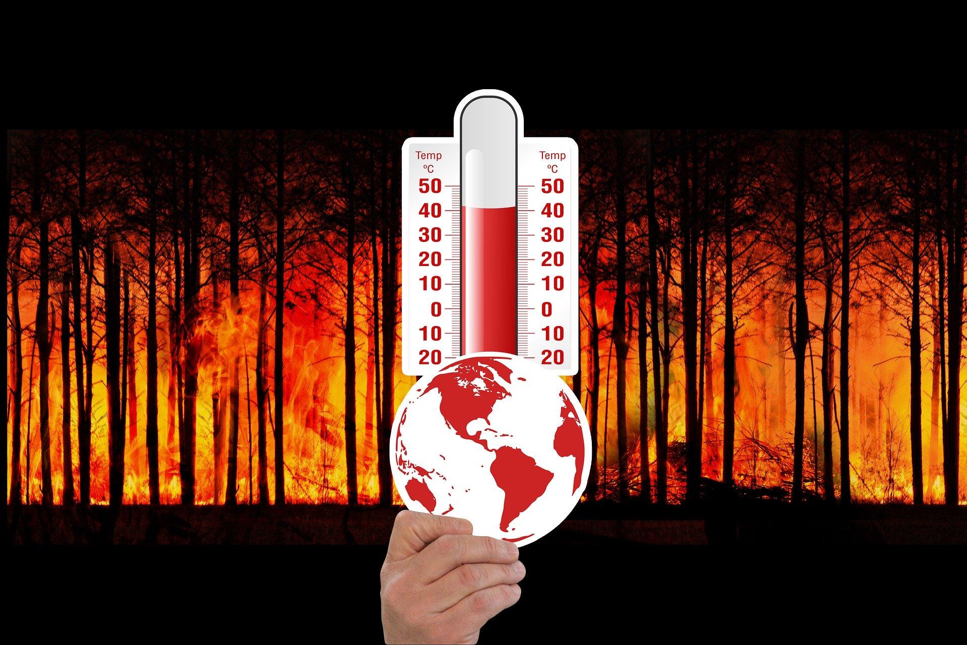 Im heißeren Klima brennt leicht unser Wald