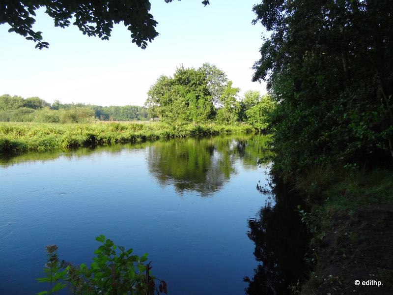 Blick auf die Ilmenau im Tiergarten