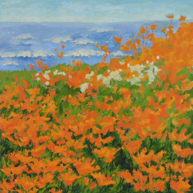 Sea Breeze Poppies, 18x18, SOLD