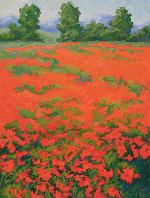 Plentiful Poppies, 24x18, SOLD