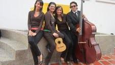 VENEZUELA: Agrupación Teclas Cuerdas y Capachos