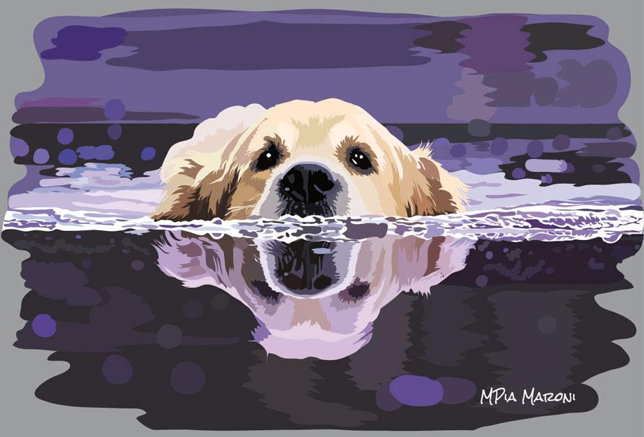 Golden Retriver in acqua, foto da Pixabay