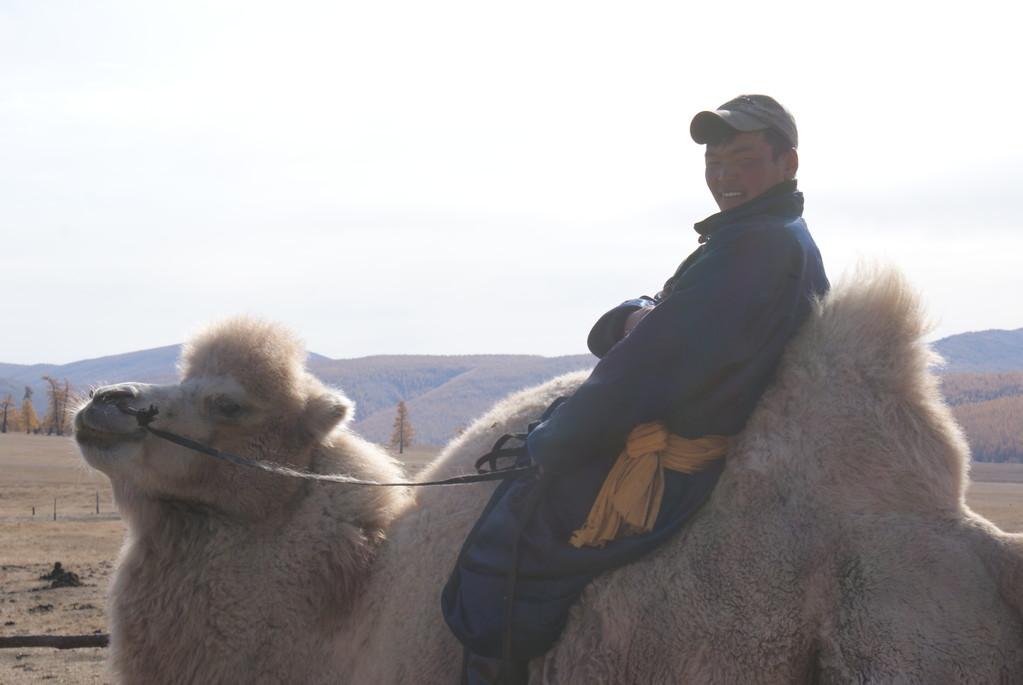 Trappeur chameau dans le desert de Gobi