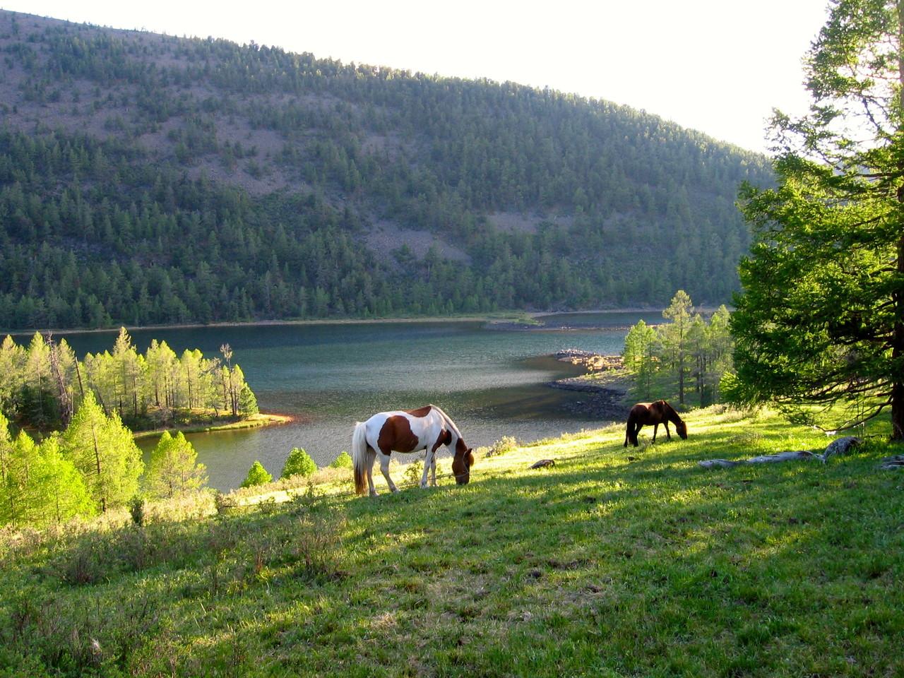 La région des huits lacs (Naiman nuur)