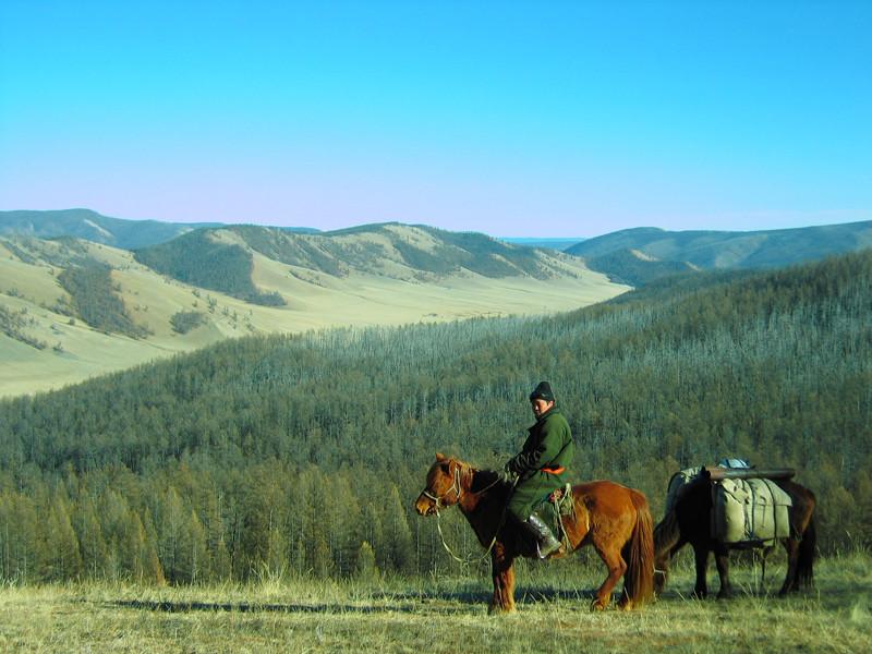 En trappeur cheval descente dans la vallée