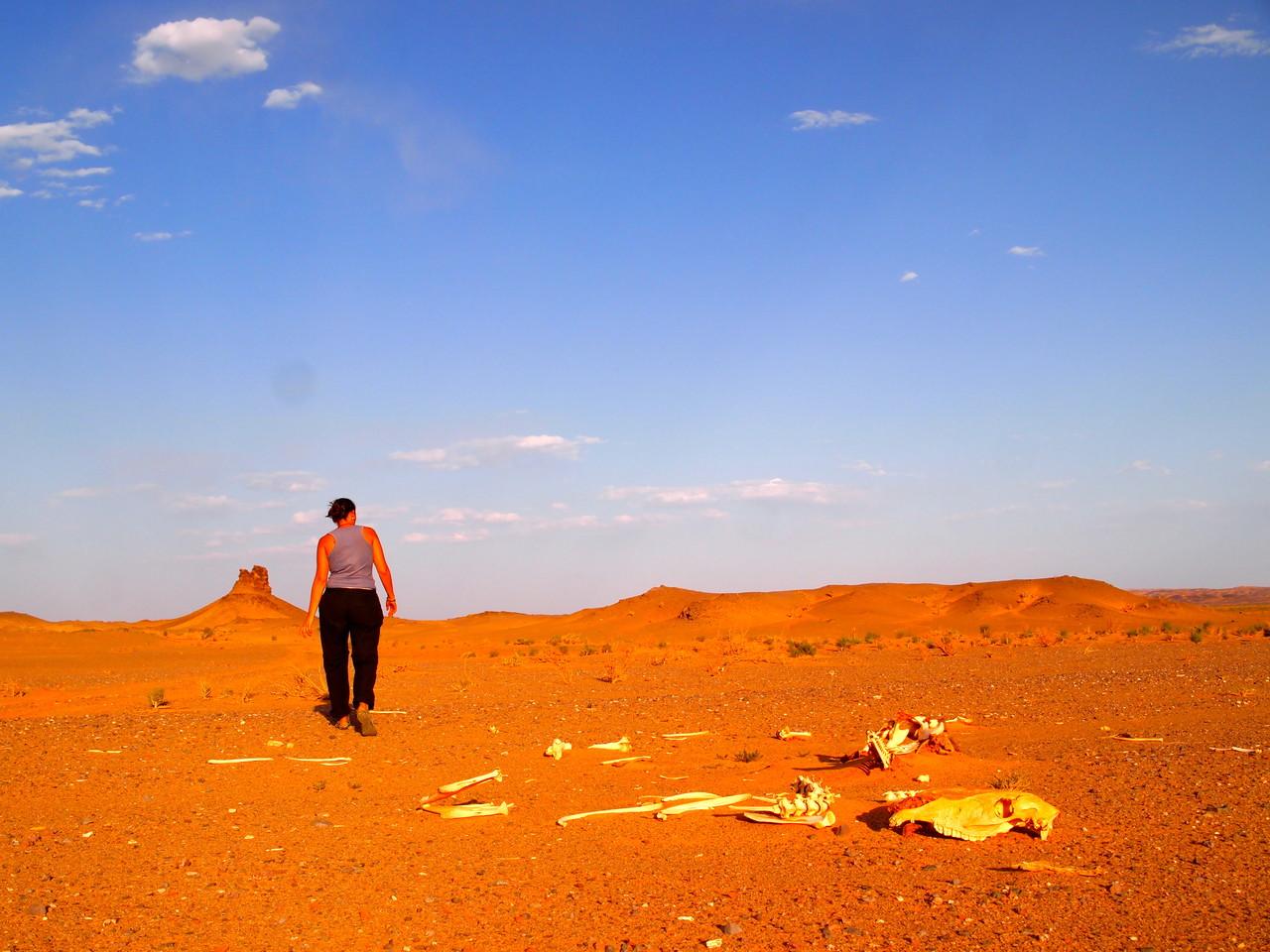 Les couleurs du désert de Gobi