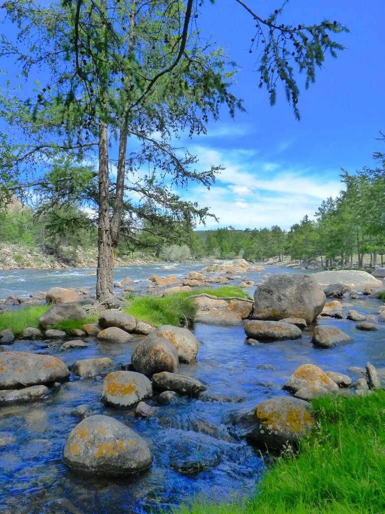 Vous pouvez boire l'eau des rivières