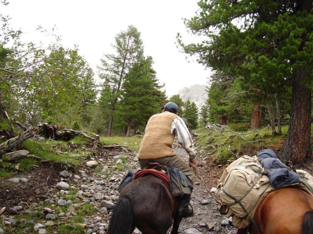 En montagne à cheval