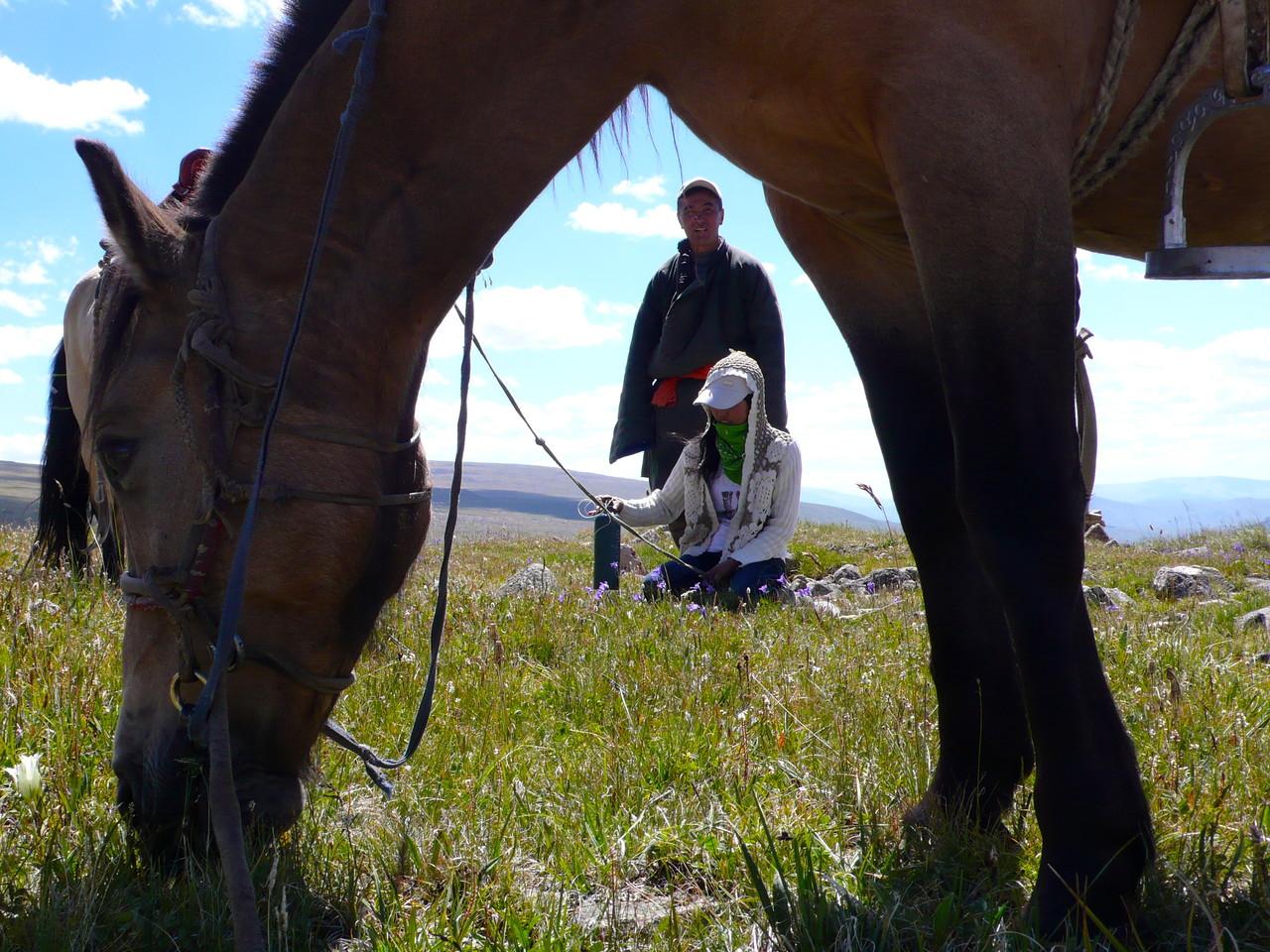 A la sieste à l'ombre de son cheval