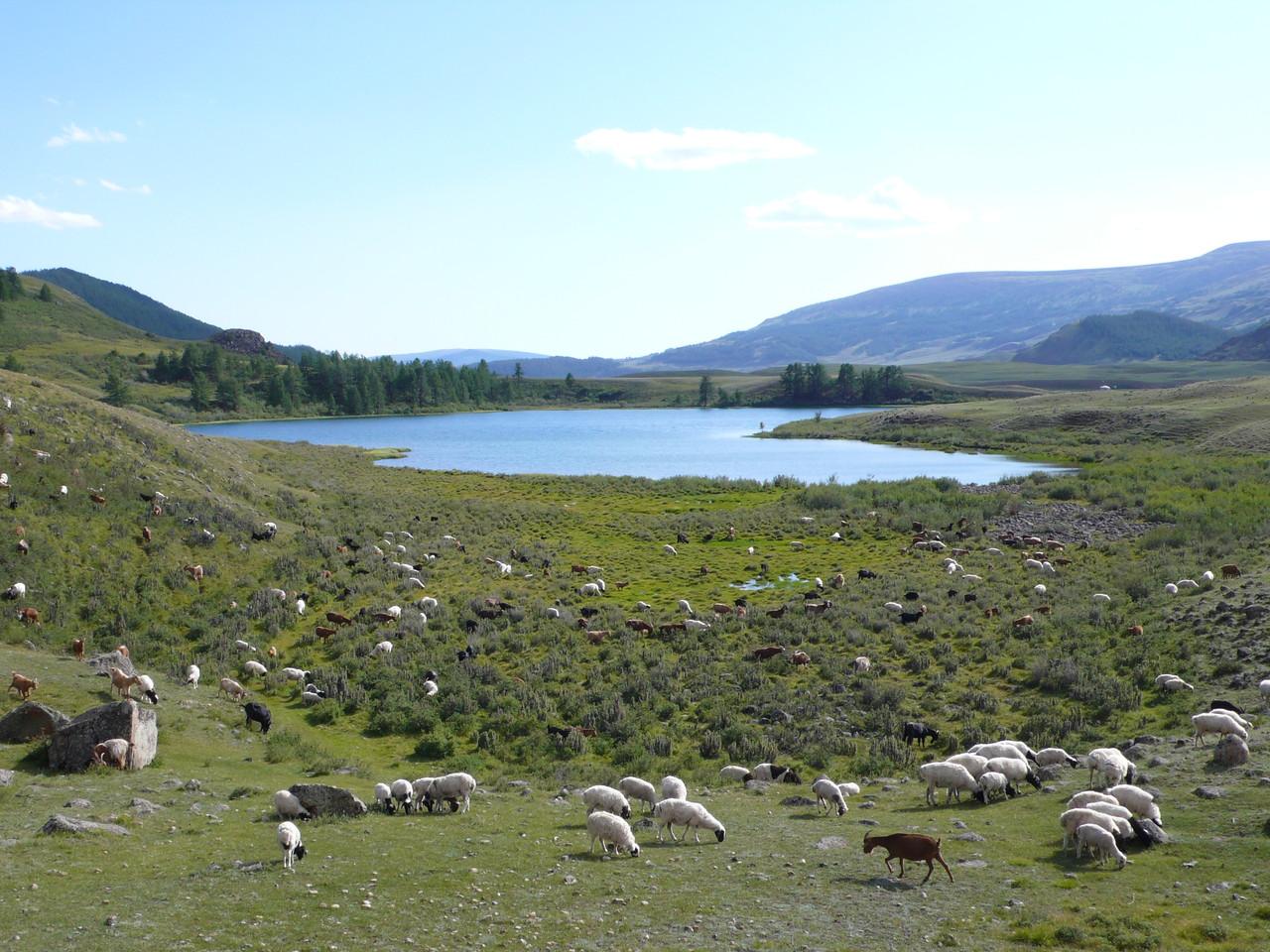 Plusieurs petits lacs dans la vallée