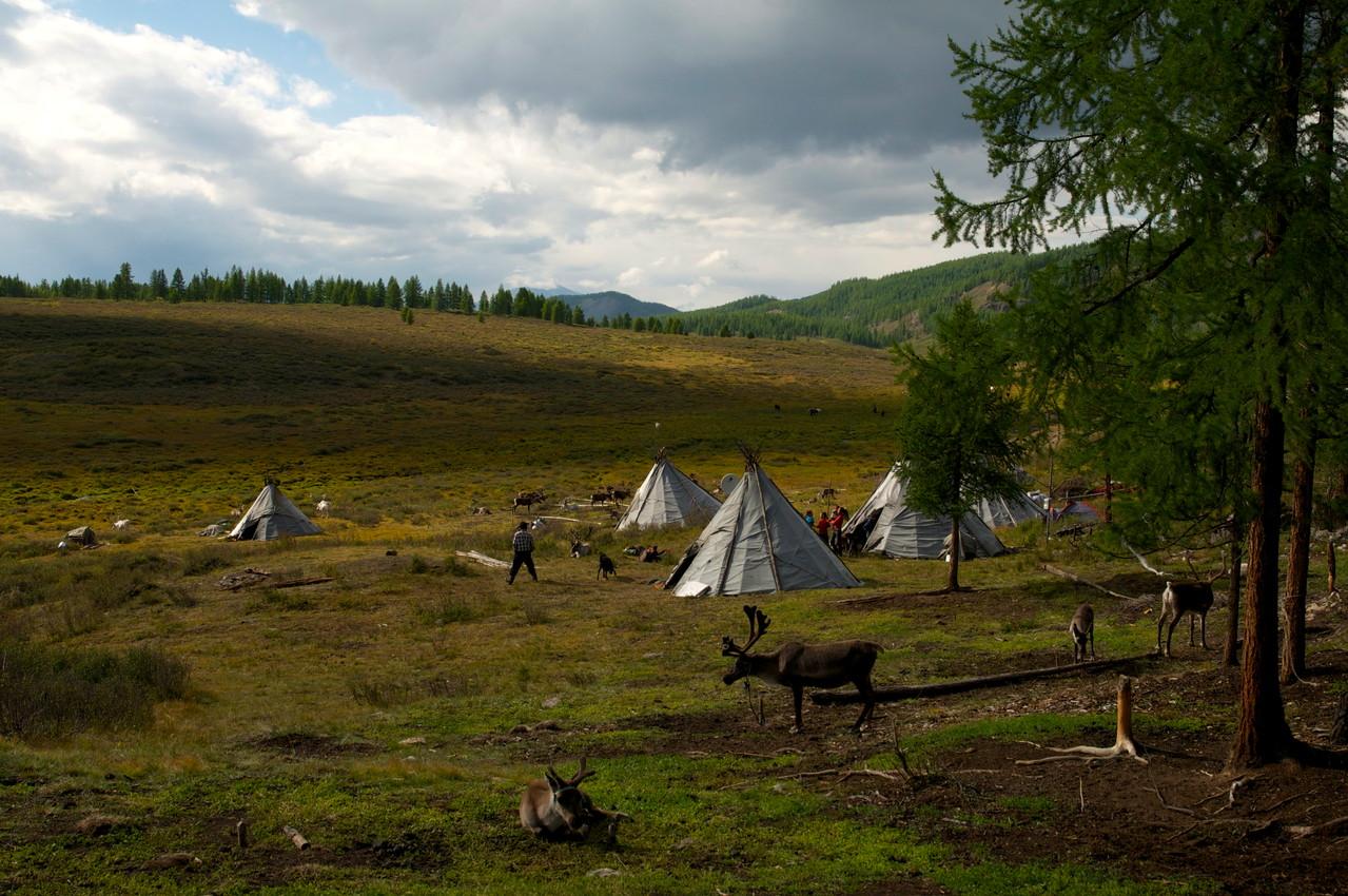 Les camps Tsaatan